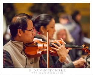 Violinist Chinh Le